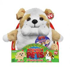 Roboti de jucarie - Pop Out Pets 3 in 1 - Catei