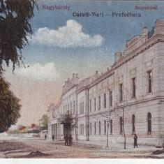 Romania, Nagykaroly, Careii Mari carte postala scrisa necirculata 1918: Prefectura, Fotografie