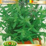 Seminte de isop