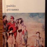 Antonina Vallentin - Pablo Picasso - Biografie