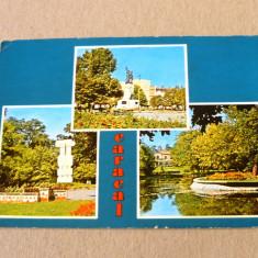 Carte Postala, Circulata, Fotografie - Caracal - olt - vederi - centru - circulata 1980 - 2+1 gratis - RBK10170