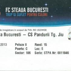 Bilet meci Steaua - Pandurii Tg. Jiu (2013)