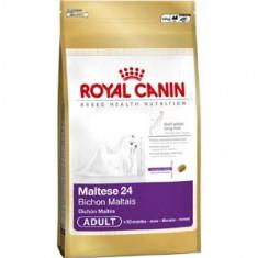 Mancare caini - Royal Canin Bichon Maltese 24 1 5 kg PROMO