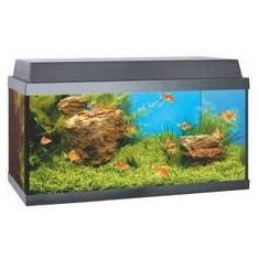 Acvariu Juwel Korall 60