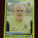 Cartonas / Sticker fotbal - A Mandorlini / Hellas Verona - Calciatori 2014 -2015 - Cartonas de colectie