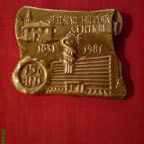 Medalii Romania, An: 1981 - Medalie placheta deosebita SPITALUL MILITAR CENTRAL 1831-1981, 150 ANI
