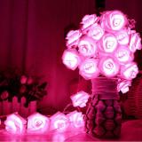 Gradinarit - Ghirlanda exterior 20 de trandafiri