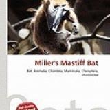 Miller's Mastiff Bat