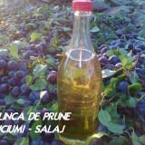 Vand PALINCA de PRUNE - de buciumi
