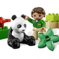 Ursuletul panda (6173) - Caciula Copii
