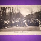 Familia Regala - Port Popular - Hora