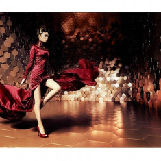 Tablou pe sticla Lady in Red