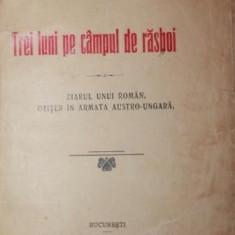 TREI LUNI PE CAMPUL DE RAZBOI ziarul unui roman ofiter in armata austr-ungara - OCTAVIAN C . TASLAUANU - Carte de colectie