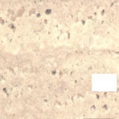 Blat de bucatarie 5800 SQ (niagara) - 3050 x 600 x 28mm