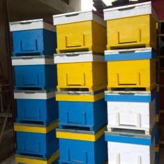 Cutii de stupi noi si caturi - Apicultura