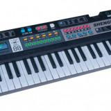 Orga Electronica Pianina Copii 61 clape Microfon