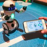 Robot MIP Wow wee