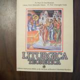 Liturgica teoretica - Pr. Prof. Dr. Ene Braniste (2002)