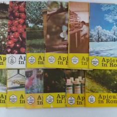 LOT COMPLET REVISTA APICULTURA ÎN ROMÂNIA/ 1987