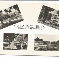 @carte postala(ilustrata)-ORADEA-Baile Victoria - Carte Postala Crisana dupa 1918, Circulata, Fotografie