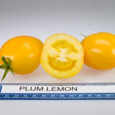 Seminte rosii - Rosii ´´ Plum Lemon ´´ 10 seminte pentru semanat