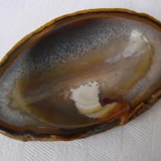 Varietate de agat nuanta maro cu cuart - Fosila roca, Felie, Agata