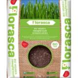 Ghiveci - Pamant ecologic pentru iarba de grau 3 L Obio
