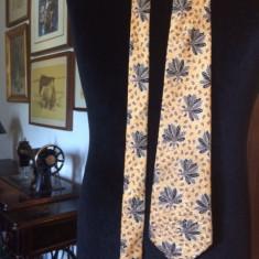 Cravata CERRUTI 1881 matase - Cravata Barbati Cerruti, Culoare: Multicolor