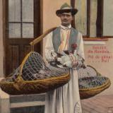 VANZATOR PUI DE GAINA, SALUTARI DIN ROMANIA - Carte postala tematica, Circulata, Printata