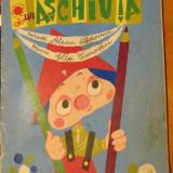 Aventurile lui Aschiuta Carte de colorat
