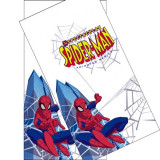 Fata de masa Spider-man - Decoratiuni petreceri copii