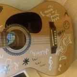 Vand Chitara acustica Hora