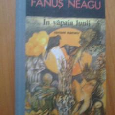 H4 In Vapaia Lunii - Fanus Neagu - Roman