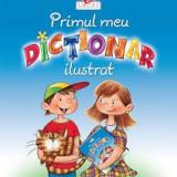 Primul meu dictionar ilustrat - Carte educativa